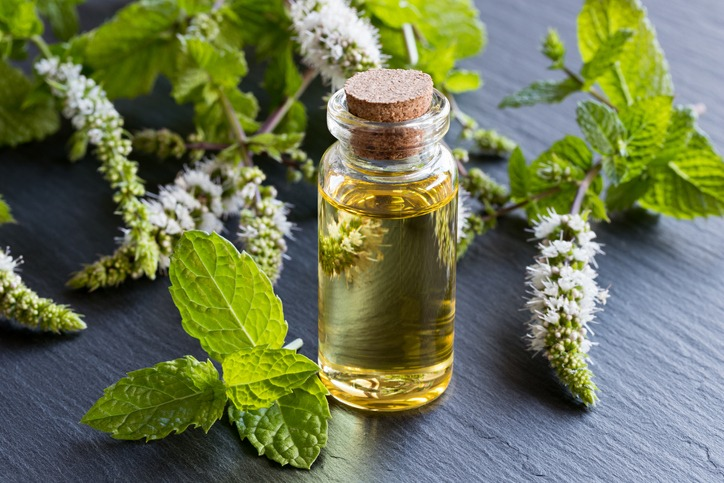 Incorporate Essential Oils into Your Life