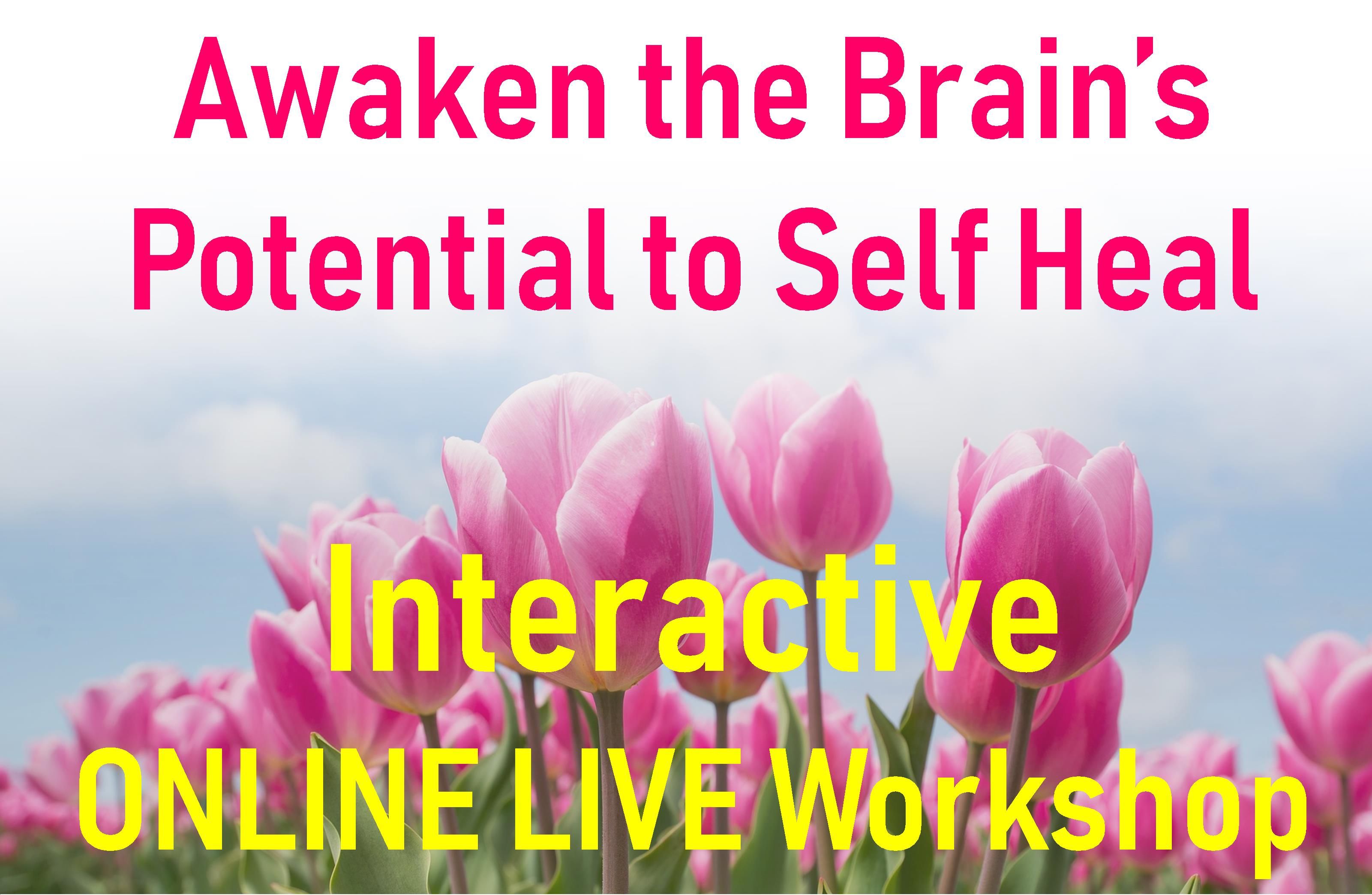 Awaken The Brains Potential to Self Heal April 26th